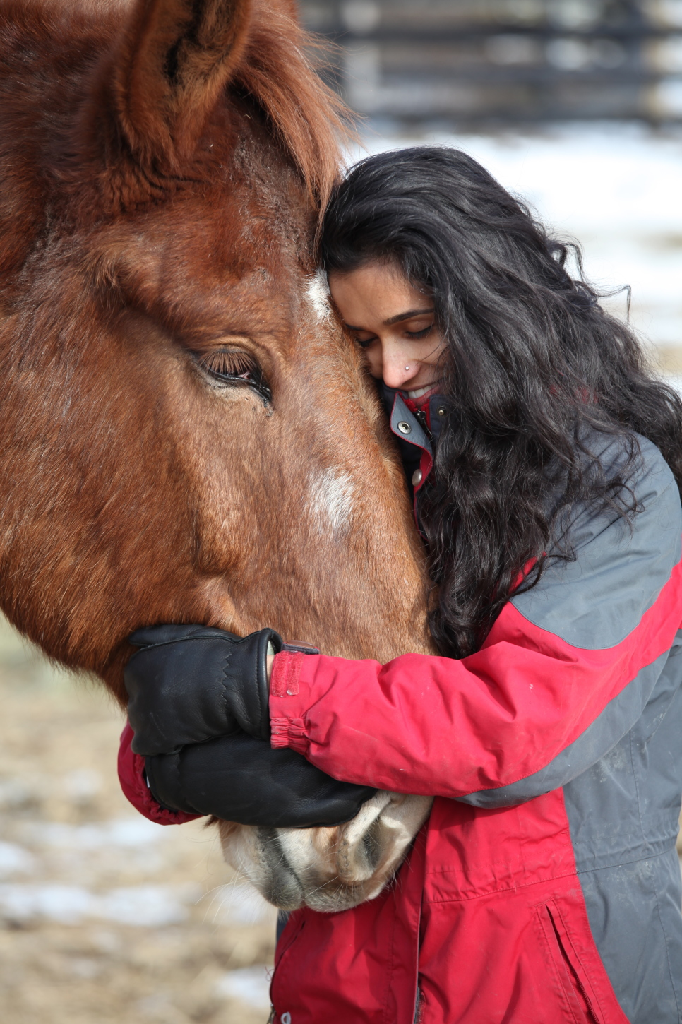 Woman embracing a horse